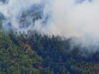 В Якутии из-за лесных пожаров перекрыли федеральную трассу «Колыма» (ВИДЕО)