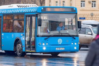Росстат: половина российских семей не имеет автомобиля