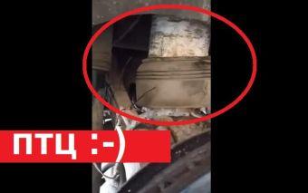 Пятничная подборка видео: BMW со встроенным поленом в подвеске и другое